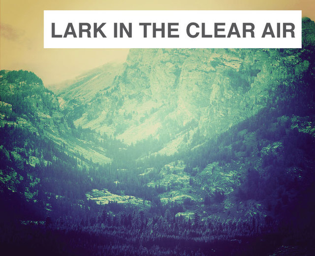 The Lark in the Clear Air | The Lark in the Clear Air| MusicSpoke