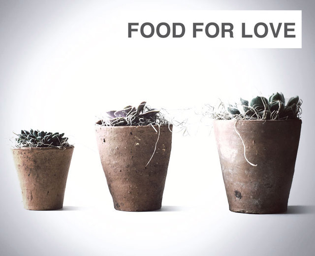 Food for Love | Food for Love| MusicSpoke