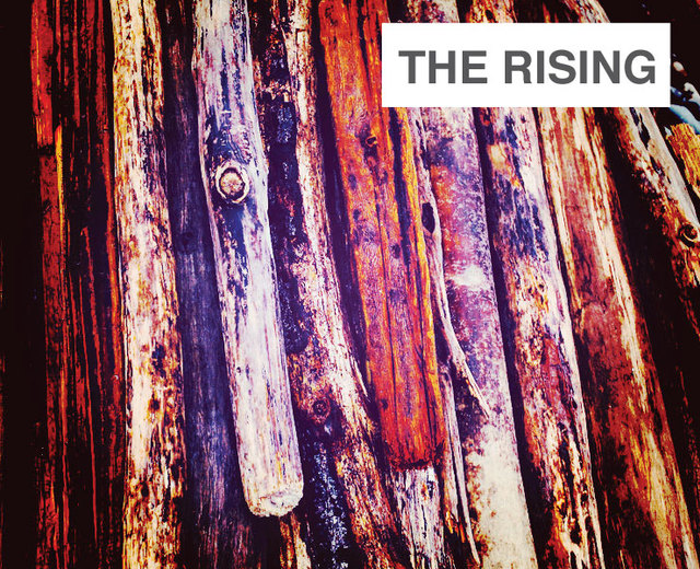 The Rising | The Rising| MusicSpoke