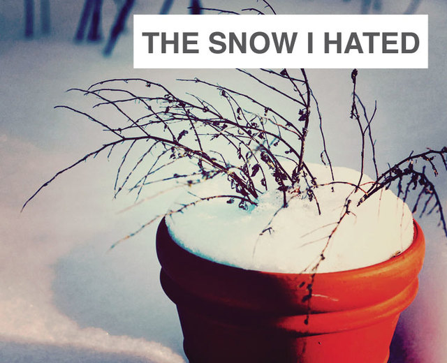 The Snow I Hated | The Snow I Hated| MusicSpoke