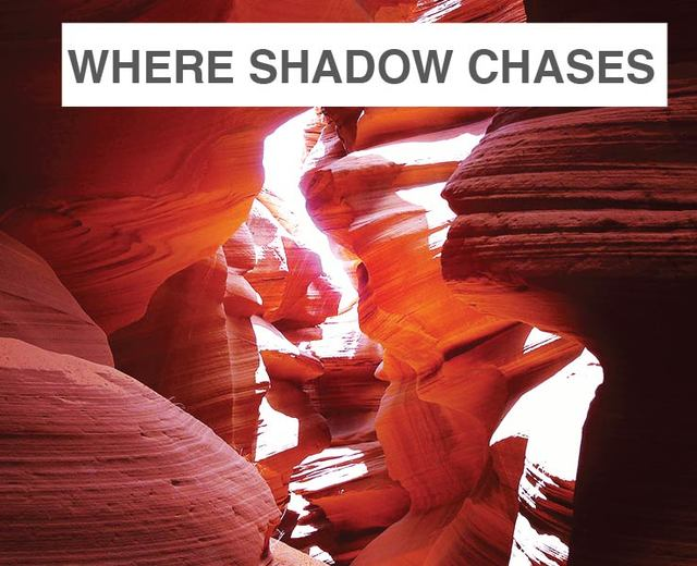 Where Shadow Chases Light | Where Shadow Chases Light| MusicSpoke