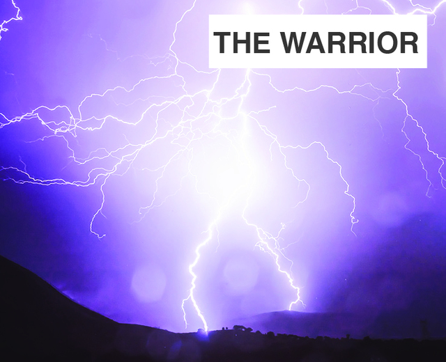The Warrior | The Warrior| MusicSpoke