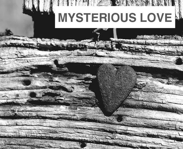 Mysterious Love | Mysterious Love| MusicSpoke