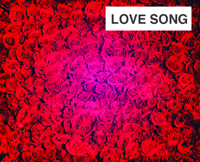 Love Song | Love Song| MusicSpoke
