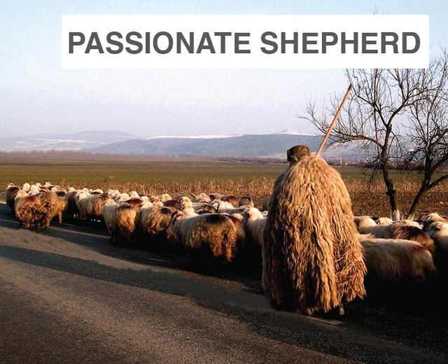 The Passionate Shepherd to His Love | The Passionate Shepherd to His Love| MusicSpoke