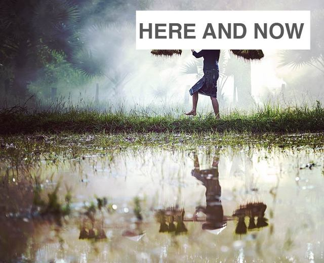 Here and Now | Here and Now| MusicSpoke