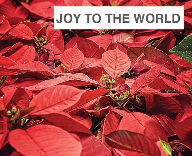 Joy to the World | Joy to the World| MusicSpoke