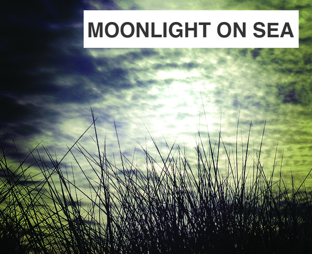 Moonlight on Sea | Moonlight on Sea| MusicSpoke