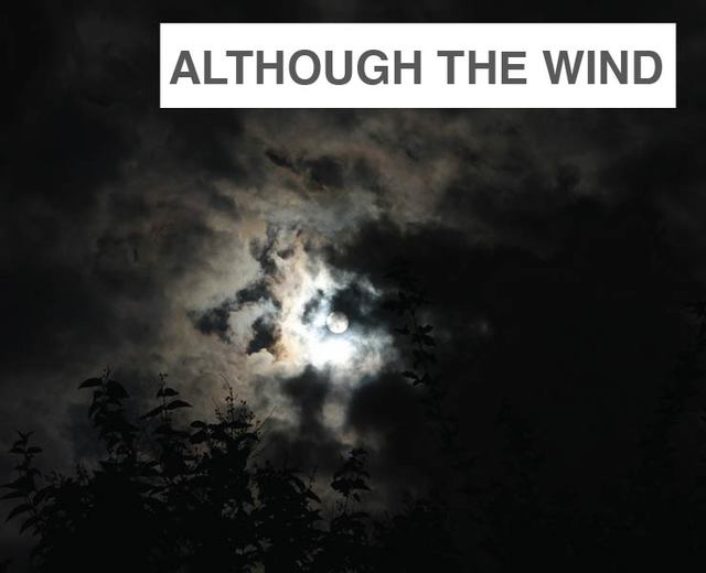 Although the Wind | Although the Wind| MusicSpoke