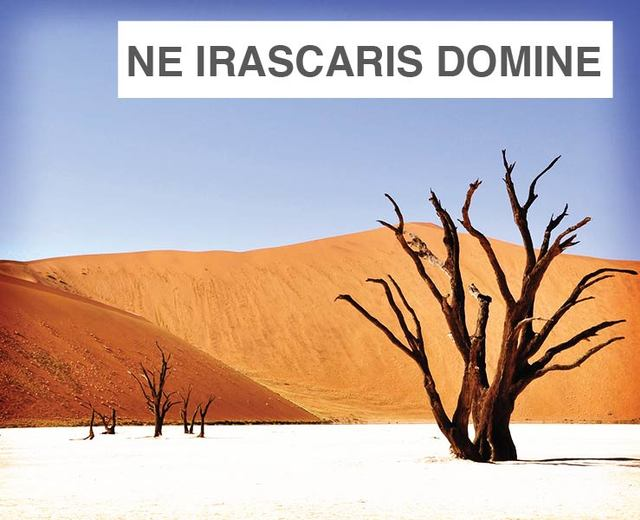 Ne Irascaris Domine | Ne Irascaris Domine| MusicSpoke