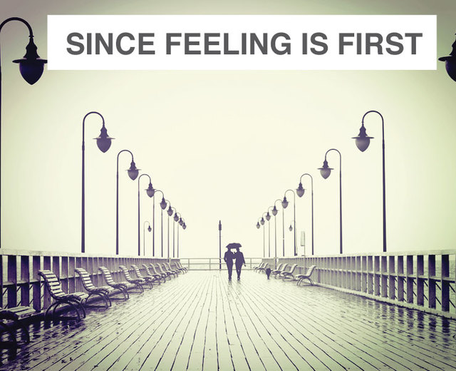 since feeling is first | since feeling is first| MusicSpoke