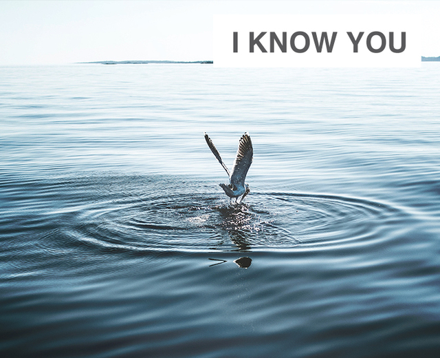 I Know You | I Know You| MusicSpoke