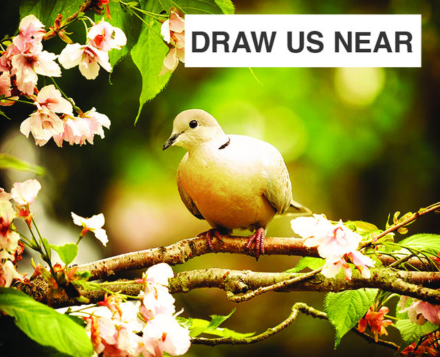 Draw Us Near | Draw Us Near| MusicSpoke