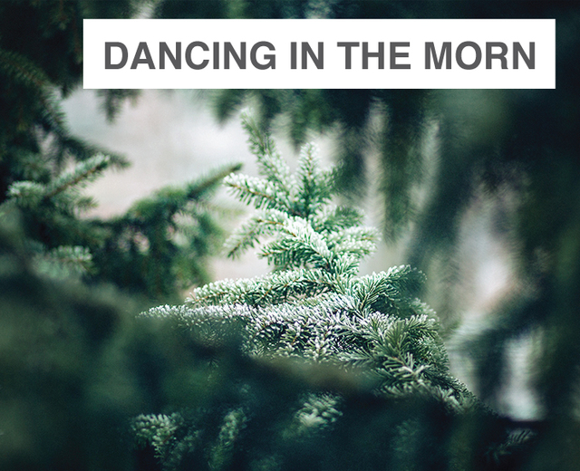 Dancing In The Morn (Christmas Song) | Dancing In The Morn (Christmas Song)| MusicSpoke