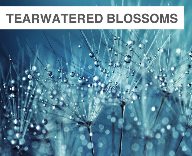 Tearwatered Blossoms | Tearwatered Blossoms| MusicSpoke
