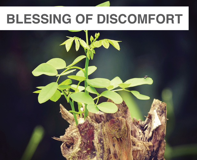 A Blessing of Discomfort | A Blessing of Discomfort| MusicSpoke
