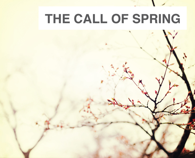 The Call of Spring | The Call of Spring| MusicSpoke