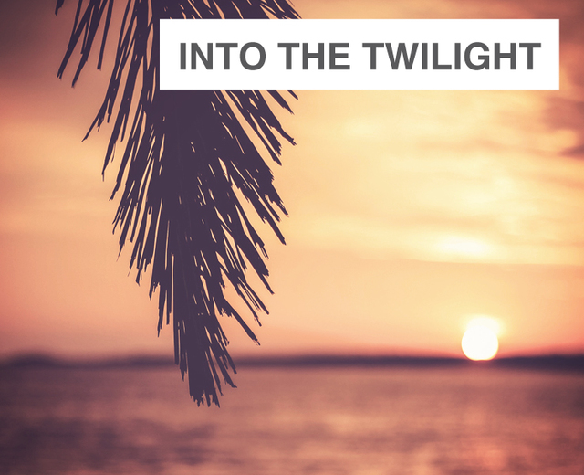 Into The Twilight | Into The Twilight| MusicSpoke