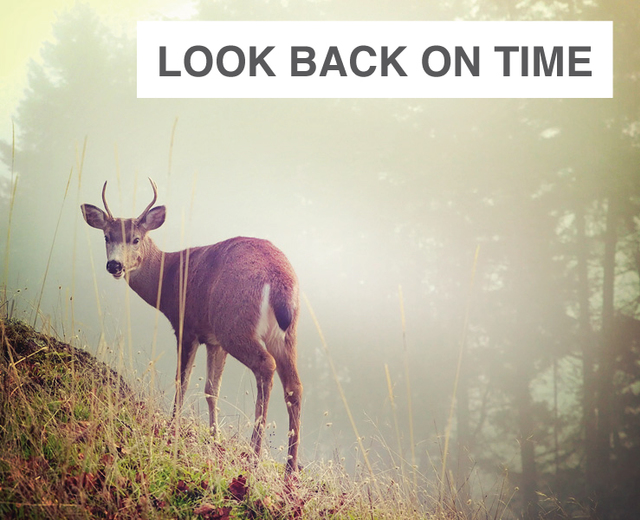 Look Back on Time with Kindly Eyes  | Look Back on Time with Kindly Eyes | MusicSpoke