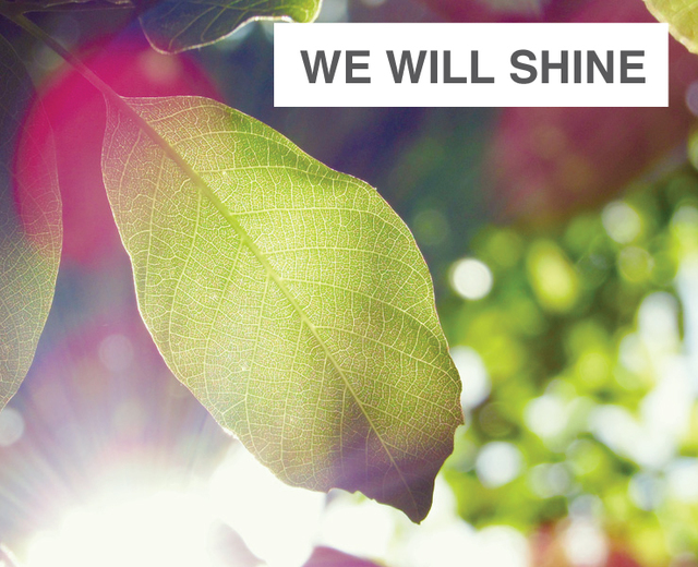We Will Shine Like The Sun | We Will Shine Like The Sun| MusicSpoke