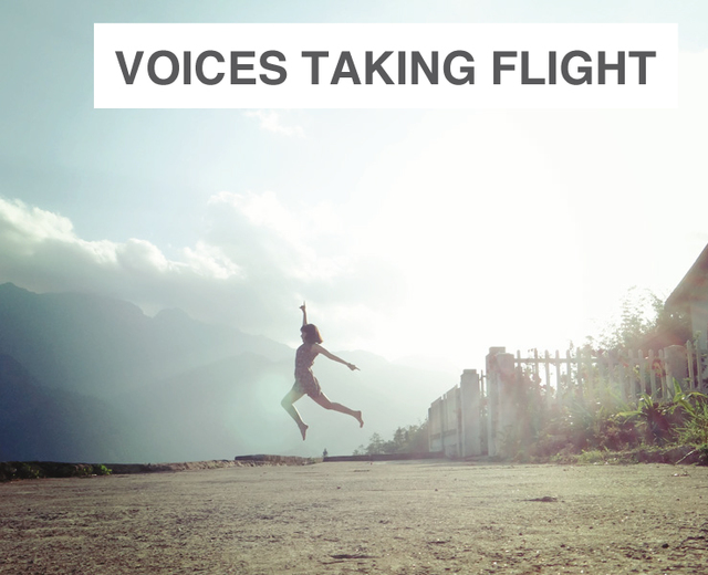 Voices Taking Flight | Voices Taking Flight| MusicSpoke