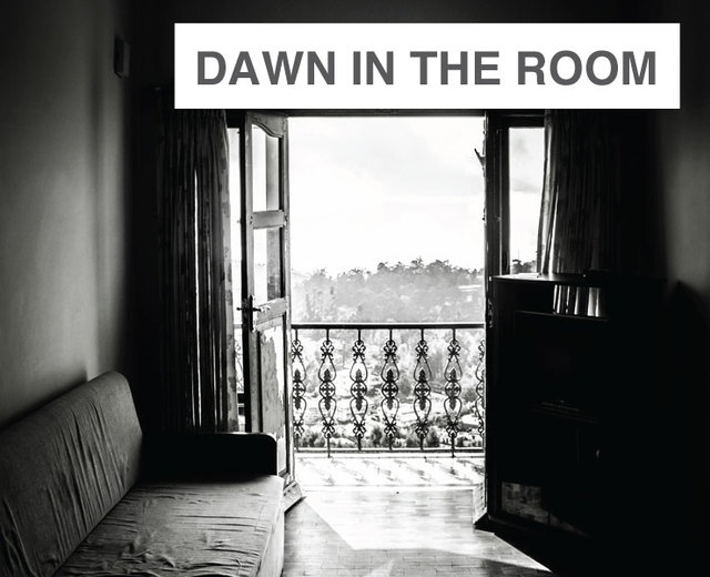 Dawn in the Room | Dawn in the Room| MusicSpoke