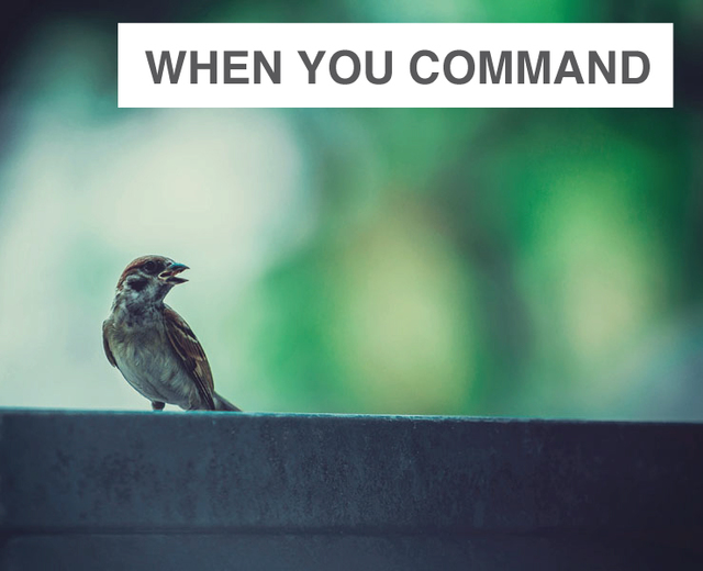 When You Command Me To Sing | When You Command Me To Sing| MusicSpoke