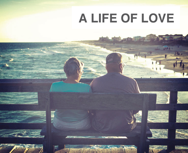 A Life of Love | A Life of Love| MusicSpoke