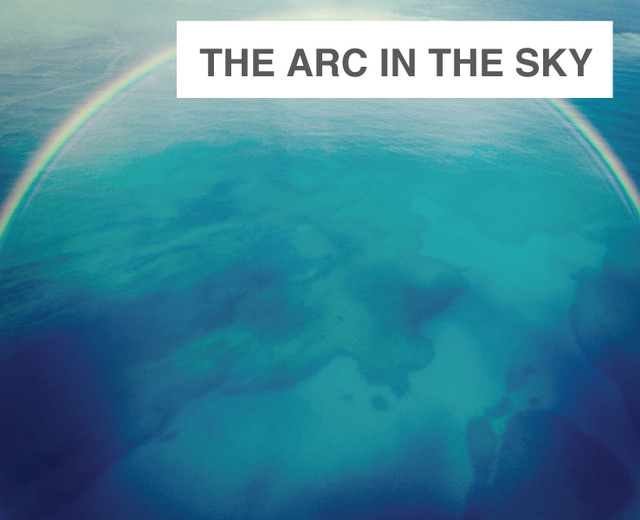 The Arc in the Sky | The Arc in the Sky| MusicSpoke