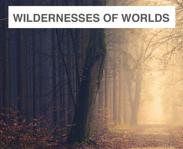 Through the Wildernesses of Worlds | Through the Wildernesses of Worlds| MusicSpoke