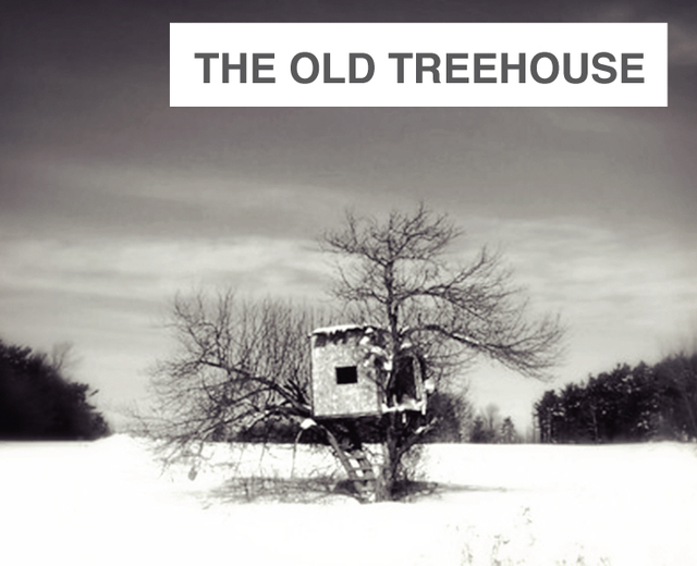 The Old Treehouse | The Old Treehouse| MusicSpoke