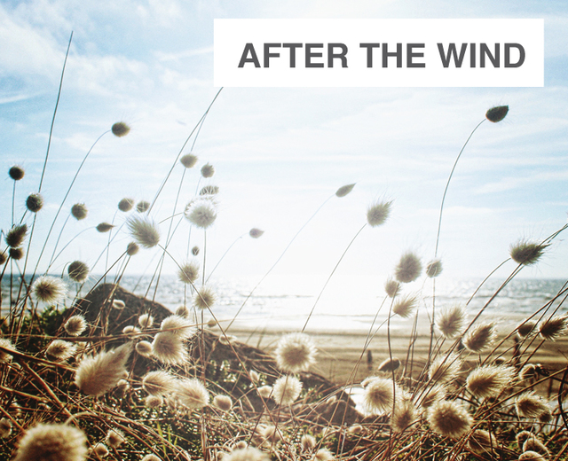 After the Wind | After the Wind| MusicSpoke