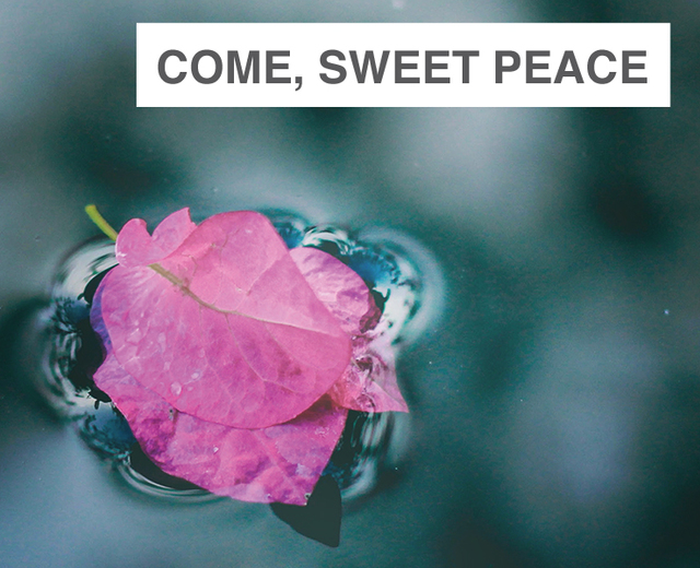 Come, Sweet Peace | Come, Sweet Peace| MusicSpoke
