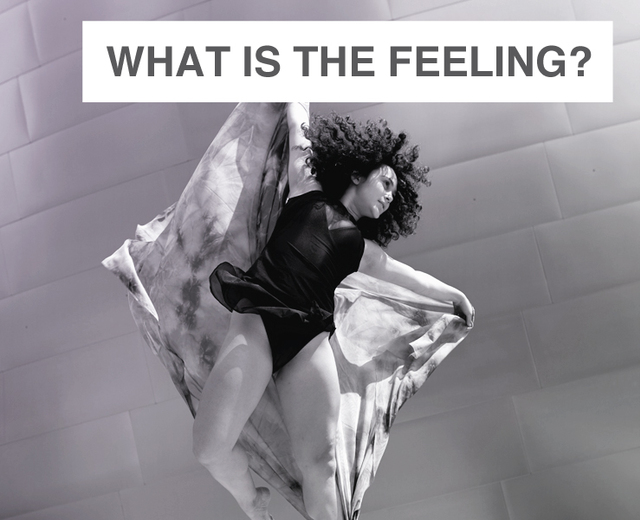What Is The Feeling? | What Is The Feeling?| MusicSpoke