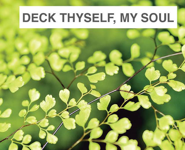 Deck thyself, my soul, with gladness | Deck thyself, my soul, with gladness| MusicSpoke