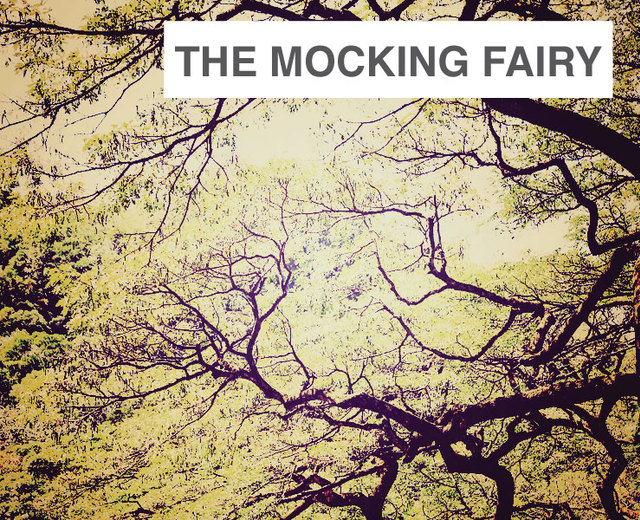 The Mocking Fairy | The Mocking Fairy| MusicSpoke