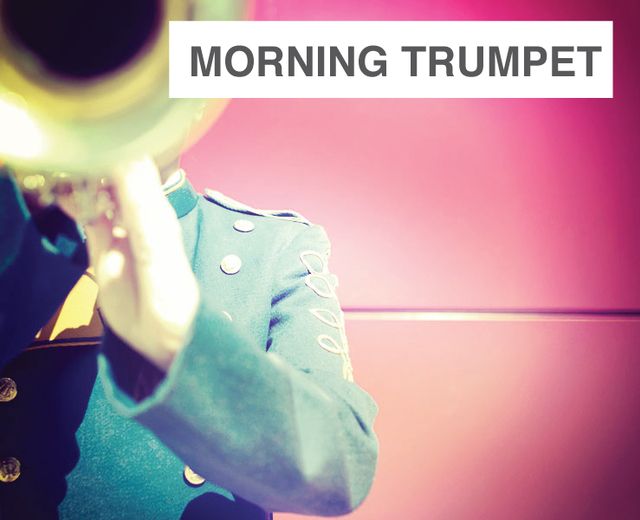 The Morning Trumpet | The Morning Trumpet| MusicSpoke