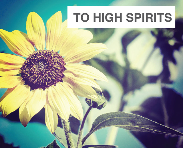 To High Spirits | To High Spirits| MusicSpoke
