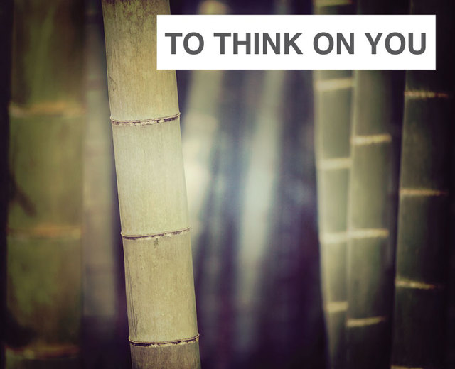 To Think On You | To Think On You| MusicSpoke