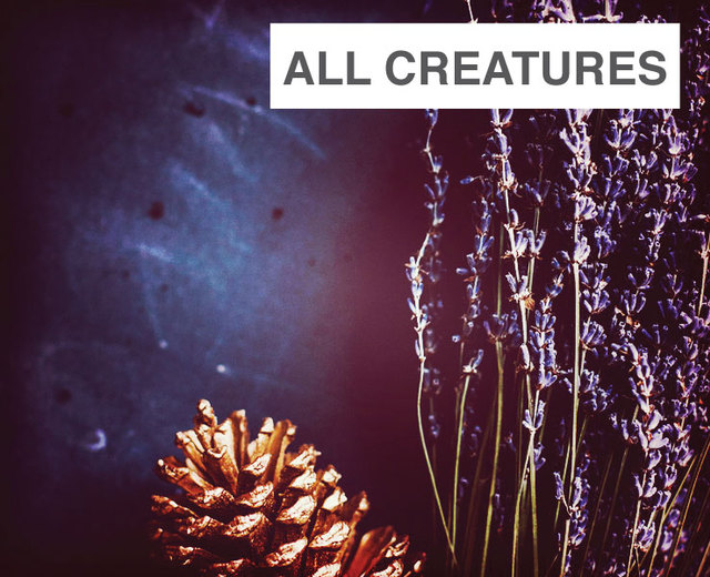 All Creatures of our God and King | All Creatures of our God and King| MusicSpoke