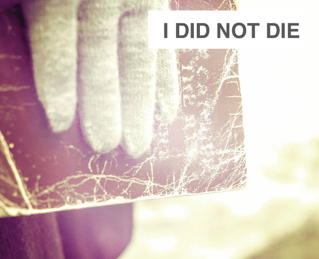 I Did Not Die | I Did Not Die| MusicSpoke