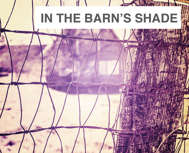 Even In The Barn's Shade | Even In The Barn's Shade| MusicSpoke
