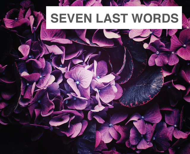 The Seven Last Words of the Unarmed | The Seven Last Words of the Unarmed| MusicSpoke