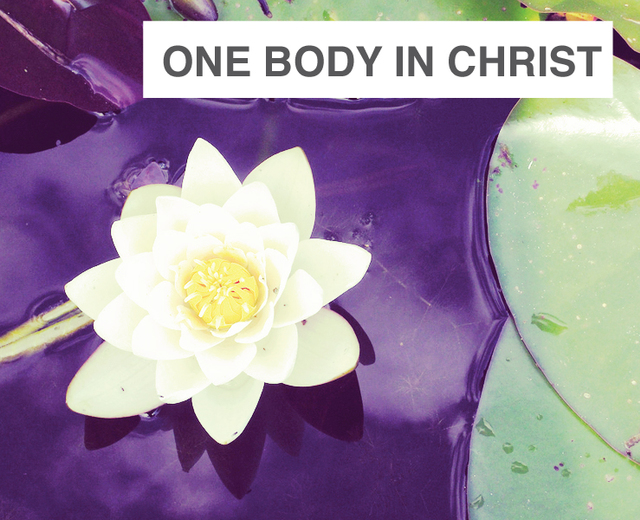 One Body in Christ | One Body in Christ| MusicSpoke
