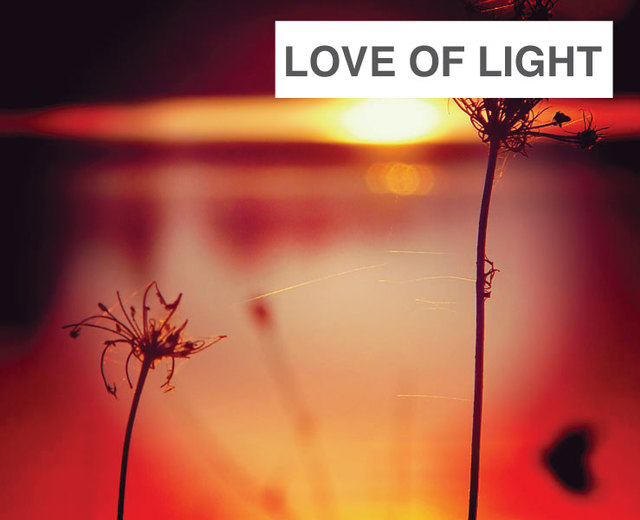 Love of Light | Love of Light| MusicSpoke